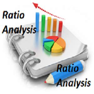 How to write a financial ratio analysis paper